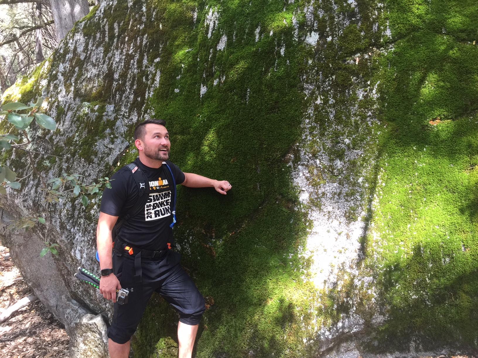 Yosemite Moss.JPG